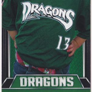 2014 Dayton Dragons ticket stub vs Whitecaps for sale
